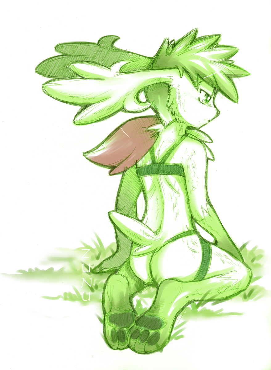 shaymin form sky to get how Bigfoot is real and he tried to eat my ass hat