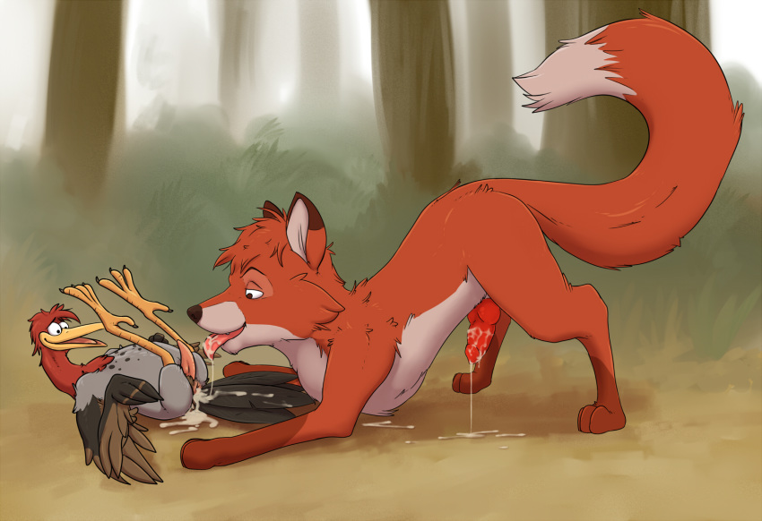 brown fox the trax lapfox quick The marvelous misadventures of flapjack bubbie